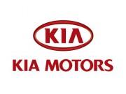 Решетка бампера Kia Cerato Coupe (TD) 86522-1M600 (оригинальная)