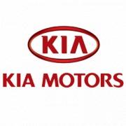 Решетка радиатора Kia Cerato Coupe (TD) 86350-1M310 (оригинальная)
